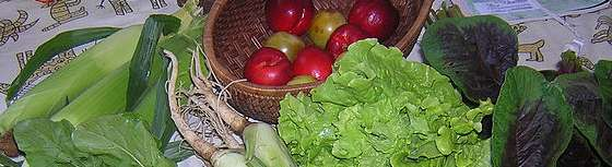 Image of vegetables. Mental illnesses and psychological disorders are frequently caused by eating sugar and junk food.
